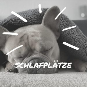 Hundeschlafplätze