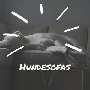 Hundesofas