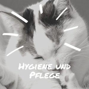 Hygiene und Pflege