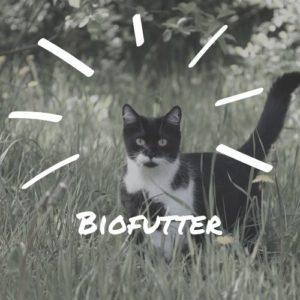 Biofutter