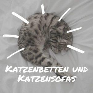 Katzenbetten und Katzensofas